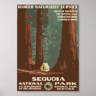 セコイア国立公園のヴィンテージ旅行 ポスター