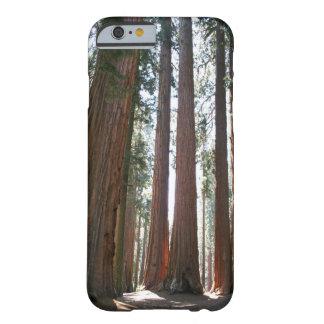 セコイア国立公園 BARELY THERE iPhone 6 ケース