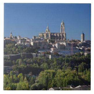 セゴビアのカテドラルとの高い町の眺め タイル