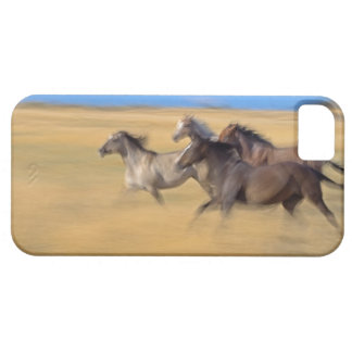 セネカ語、オレゴン、米国 iPhone SE/5/5s ケース