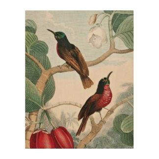 セネガルのクリーパーの鳥 ウッドウォールアート