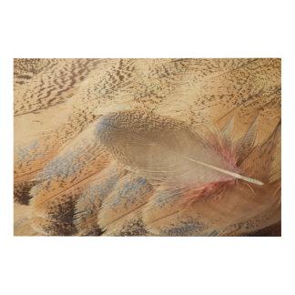 セネガルのノガン科の羽の静物画 ウッドウォールアート