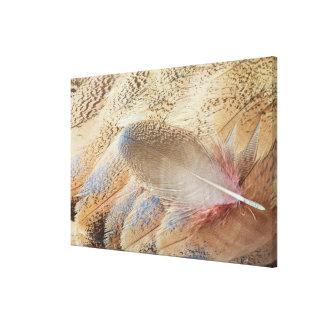 セネガルのノガン科の羽の静物画 キャンバスプリント