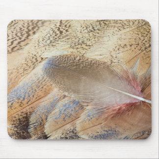 セネガルのノガン科の羽の静物画 マウスパッド