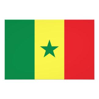セネガル-セネガルの旗 フォトプリント