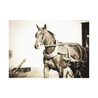 セピア色のアマン派の馬そして乳母車 キャンバスプリント