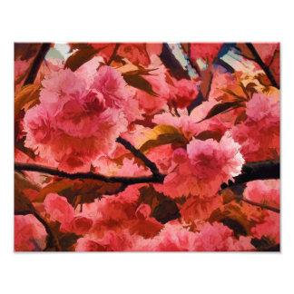 セントラル・パークのピンクの桜 フォトプリント