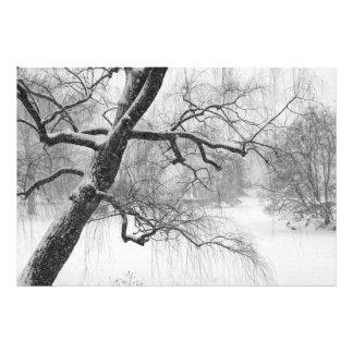 セントラル・パークの冬の雪の景色の写真 フォトプリント