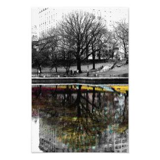 セントラル・パークの木の反射の写真 フォトプリント
