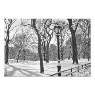 セントラル・パークの降雪B&W フォトプリント