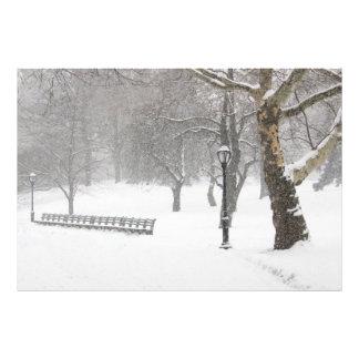 セントラル・パークの雪の嵐 フォトプリント
