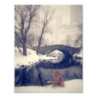 セントラル・パークの雪を通る交差橋 フォトプリント