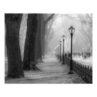 セントラル・パークの黒く及び白い景色 フォトプリント