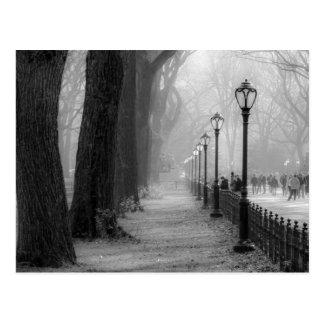 セントラル・パークの黒く及び白い景色 ポストカード
