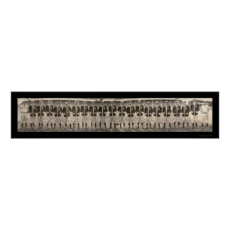 セントルイスはチーム写真1909年を茶色にします ポスター