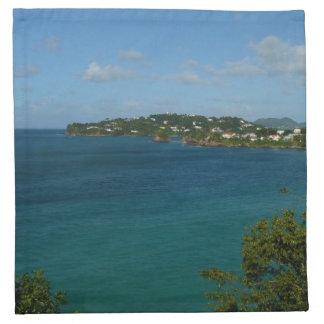 セントルシアのカリブのな休暇の写真の海岸 ナプキンクロス