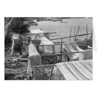 セーヌ河網、Marco Island、フロリダ1959年 カード