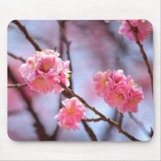 ソウルの桜 マウスパッド