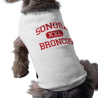ソノラ-ブロンコ-高等学校-ソノラテキサス州 ペット服