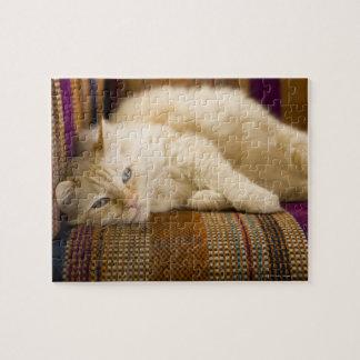 ソファに置いているかわいらしく黄色いtabi猫 ジグソーパズル