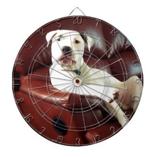 ソファのおもしろいで白いピット・ブル犬 ダーツボード