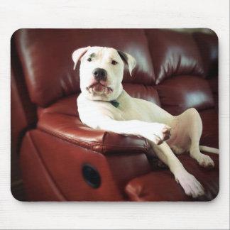 ソファのおもしろいで白いピット・ブル犬 マウスパッド