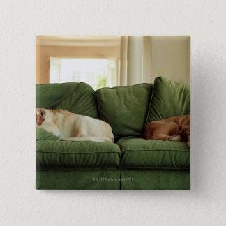 ソファーで眠っている犬 缶バッジ