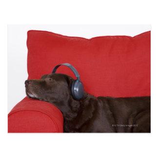 ソファーにあるラブラドールの身に着けているヘッドホーン ポストカード