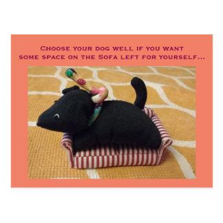 ソファーの小さいトイドッグとのおもしろいなフォトカード ポストカード