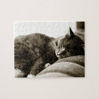 ソファー(B&Wのセピア色の調子)で眠っている猫 ジグソーパズル