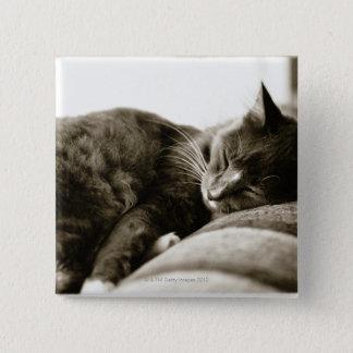 ソファー(B&Wのセピア色の調子)で眠っている猫 缶バッジ