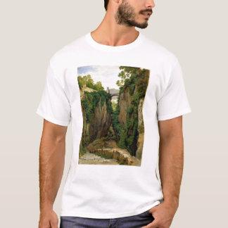 ソレント1823年の岩が多い峡谷 Tシャツ