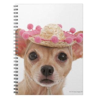 ソンブレロの小さい犬のポートレート ノートブック