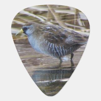 ソーラWaterbird ギターピック