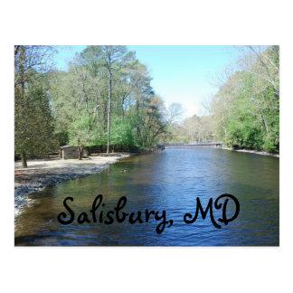 ソールズベリーの動物園、MD ポストカード