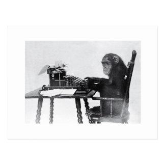 タイプ猿 葉書き