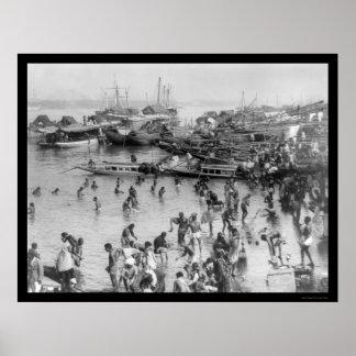 タイ港1894年で浸ること ポスター