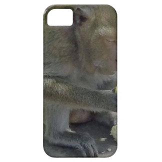 タイ猿 iPhone SE/5/5s ケース