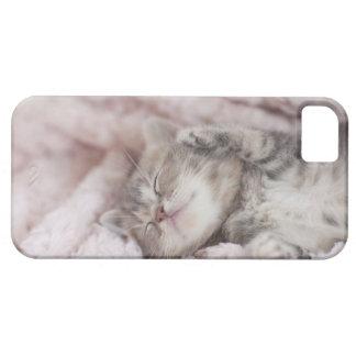 タオルで眠っている子ネコ iPhone SE/5/5s ケース
