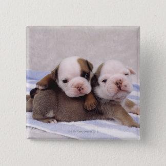 タオルの2匹のブルドッグの子犬 5.1CM 正方形バッジ