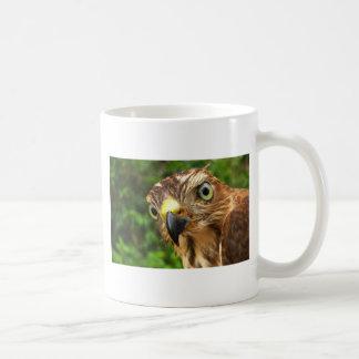 タカの目 コーヒーマグカップ