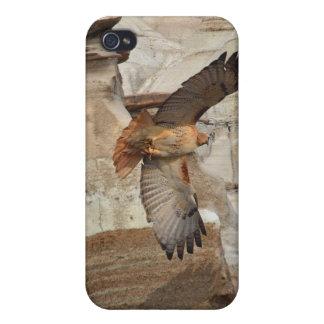 """""""タカ""""の野生鳥の猛禽のiPhoneの場合Hoodoo iPhone 4/4Sケース"""