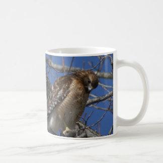 タカ、マグ コーヒーマグカップ
