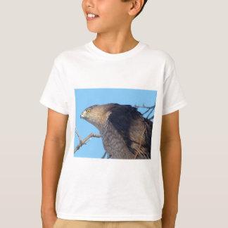 タカ Tシャツ