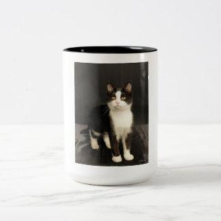 タキシードの子ネコのマグ ツートーンマグカップ