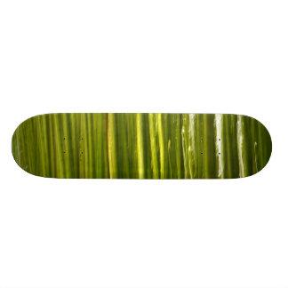 タケの抽象芸術 スケートボード