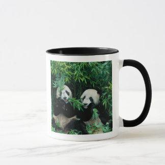 タケを、Wolong一緒に食べている、2頭のパンダ2 マグカップ