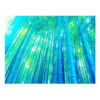 タケ森林シリーズ ポストカード