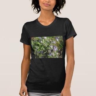 タスカニー、イタリアの花が付いているローズマリーの植物 Tシャツ