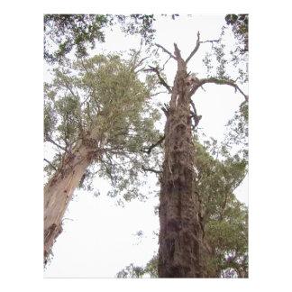 タスマニアの空のための古い木の範囲 レターヘッド